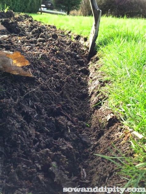 edging garden bed how to edge a garden bed sow dipity