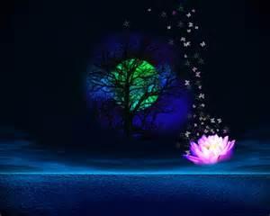 Lotus Screensaver 1280x1024 3d