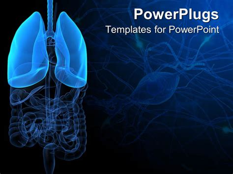 powerpoint themes lungs powerpoint template 3d representation of lungs and human
