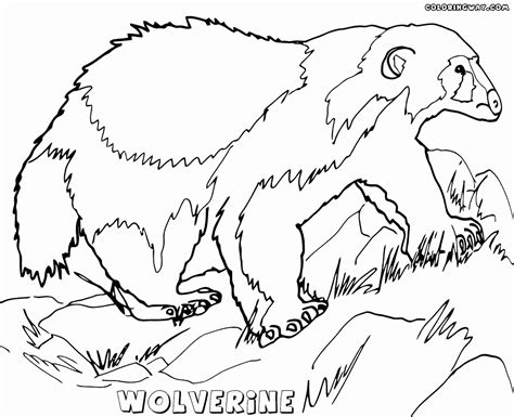 printable heroes wolf new heroes wolf coloring pages coloring pages for boys