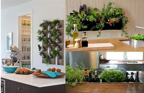 indoor kitchen garden indoor kitchen garden