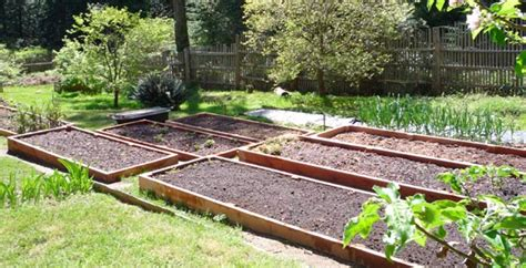 How To Set Up A Raised Garden Bed How To Build And Set Up Your New Raised Garden Beds Daily Guides Reviews