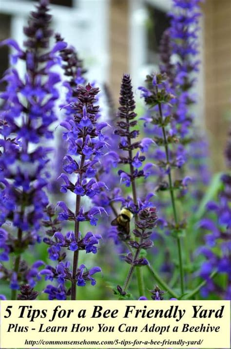 how to have a beehive in your backyard 5 tips for a bee friendly yard do your part to save the bees