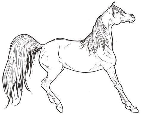 realistic pony coloring page realistic horse coloring pages to print coloring home