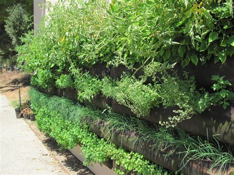 Pocket Vertical Garden 17 Best Images About Woolly Pockets Vertical Gardening