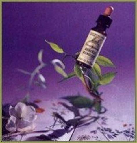 fiori di bach efficacia vivere nel benessere