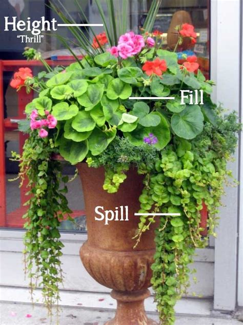 beautiful container gardens the simple formula for a beautiful container garden