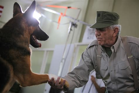 r ermey tv shows adopting working dogs mwd sportsman channel