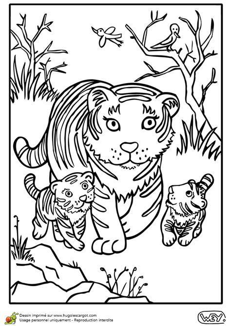 Dessin 224 Colorier D Une Maman Tigre Et De Ses Tigreaux Coloriage Un Guepard Avec Les Animaux De La Jungle Dessin A Imprimer L