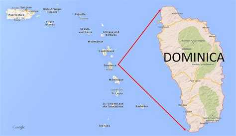 dominica on world map dominica whales wilk