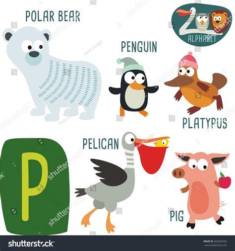 animal alphabet letters q u vector vectores en stock zoo alphabet in vector p letter