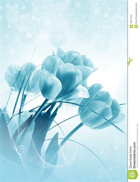 4 flores azules para jard tulipanes m 225 gicos azules imagenes de archivo imagen