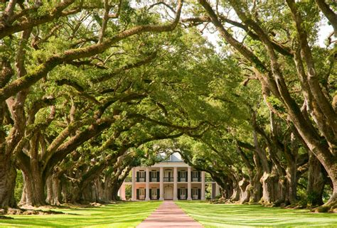 famous houses in la 40 plantation home designs historical contemporary