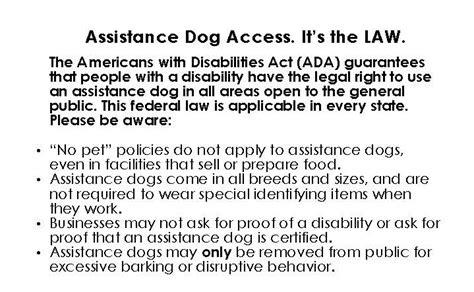 ada service laws neads world class service dogs rights access laws