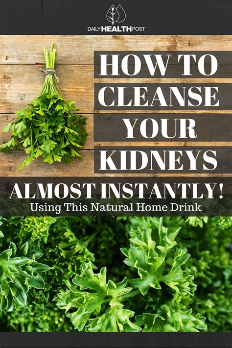 How Can I Detox My Naturally At Home by How To Cleanse My Kidneys Naturally Thecarpets Co