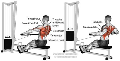 seated cable row wide grip cable row exercise guide and weight
