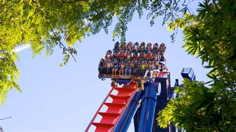 busch gardens family vacation packages busch gardens in ta florida expedia