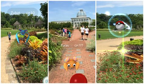 Lewis Ginter Botanical Gardens Hours Go Catch Em All At Ginter Lewis Ginter Botanical Garden