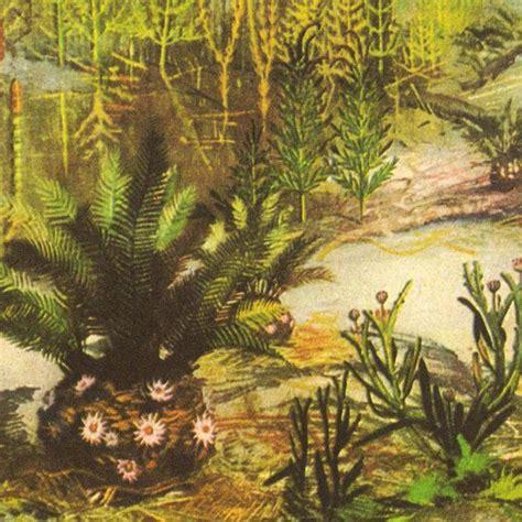mesozoic era mesozoic era landscape vintage print plants triassic
