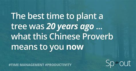 the best time to plant a tree was 20 years ago what