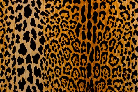 poly cotton twill leopard print brown cream discount interesting 40 leopard print fabric decorating design of