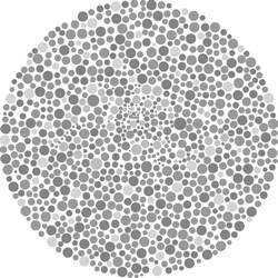 blue yellow color blind test color blindness dr michael bold od inc la palma