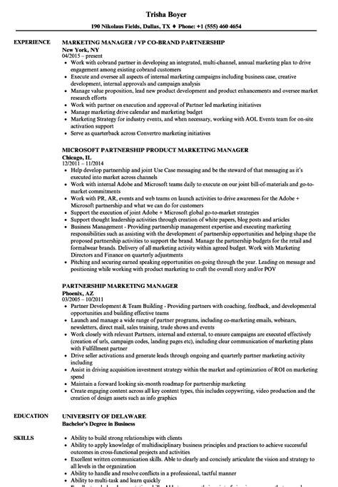 marketing executive cv template agi mapeadosencolombia co