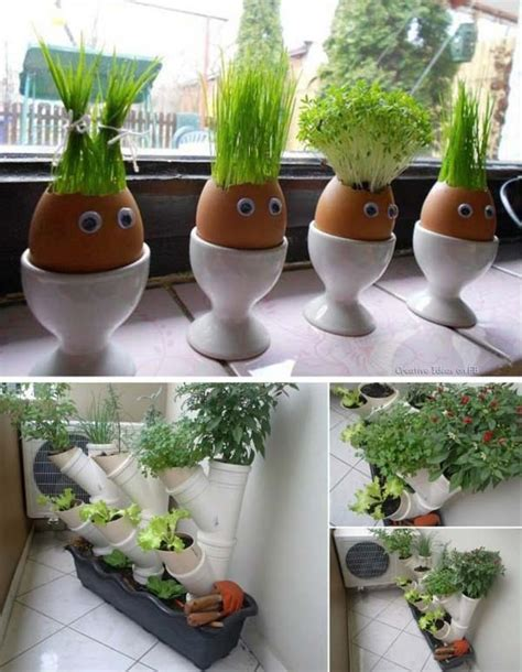 Inside Garden Ideas 26 Mini Indoor Garden Ideas To Green Your Home Amazing Diy Interior Home Design
