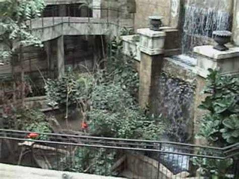 niagara falls boat accident ben s tours bird kingdom niagara falls on youtube