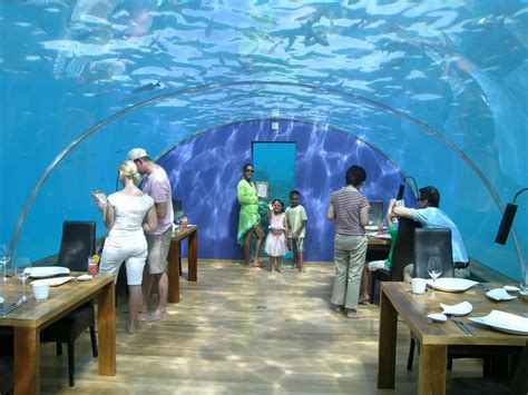 ithaa undersea restaurant ithaa restaurant inside world for travel
