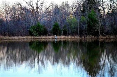 boating and swimming lakes near me 25 best texas lakes swimming holes