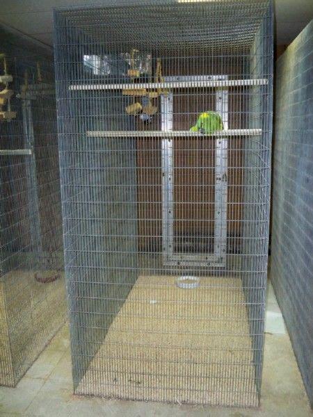 large aviary bird flight cage bird aviary
