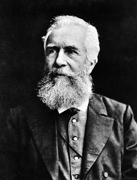 File:Ernst Haeckel