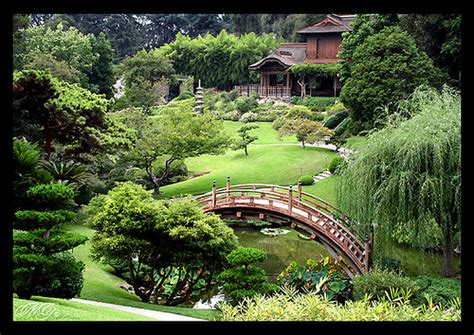 Huntington Library And Gardens by The Japanese Garden At The Huntington Flickr Photo
