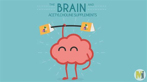 superhuman memory the comprehensive guide to increase your memory learning abilities and speed reading by 500 develop a photographic memory in just 14 days books the 2017 guide to acetylcholine supplements