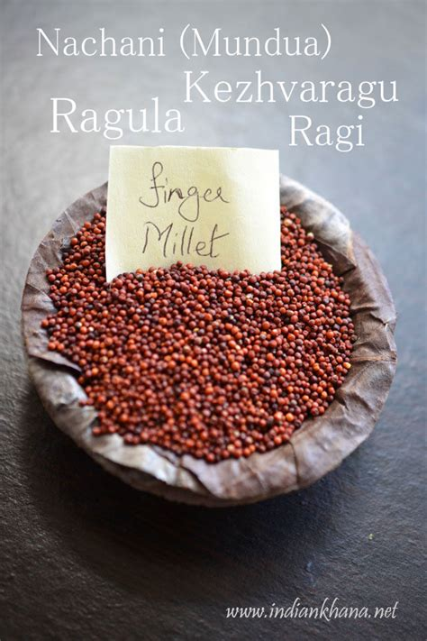 whole grains meaning in gujarati millet facts health benefits and nutritional value