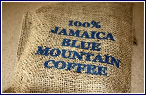 Jamaica Blue Mountain   Higher Grounds Coffee Company