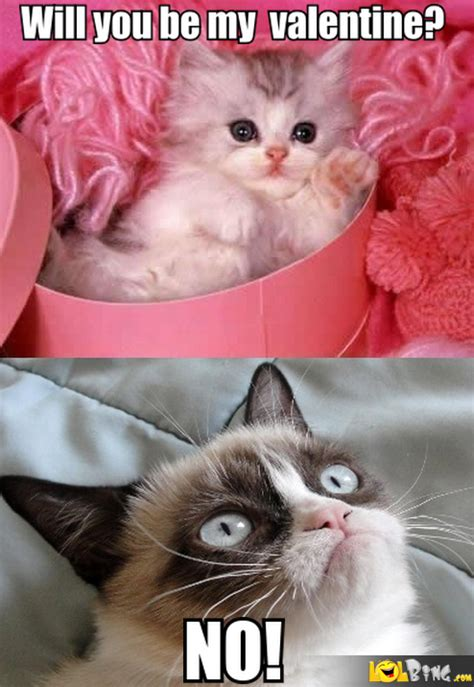 Grumpy Cat Meme Valentines Day - grumpy cat on valentine s day lol images lolbing com