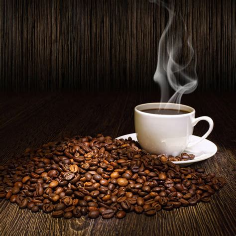 coffee seed wallpaper cup of coffee and coffee seeds background gallery