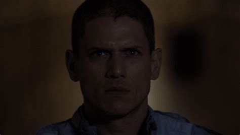 michael scofield fox gif by prison break find amp share on