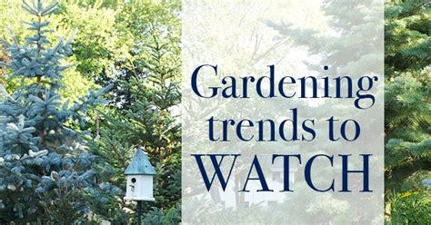 gardening trends 2017 the impatient gardener garden trends for 2017