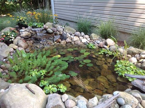 build your own outdoor pond