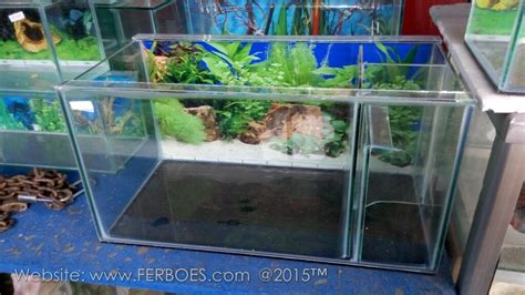 membuat filter aquarium murah meriah harga aquarium murah meriah guys ferboes com