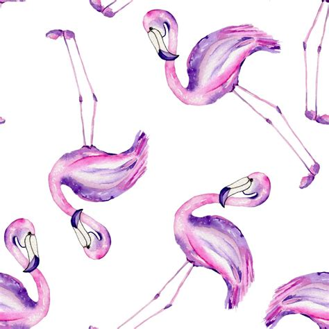 flamingo painted  watercolor   white background