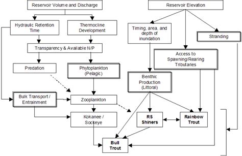 influence diagram cool diagram contemporary electrical circuit