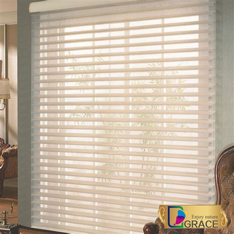 Indoor Window Blinds by New Indoor Home Window Day Zebra Roller Blinds