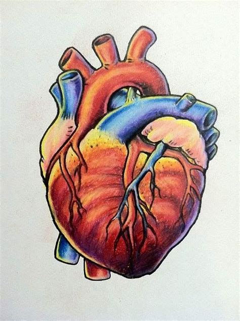 biological heart tattoo design best tattoo designs