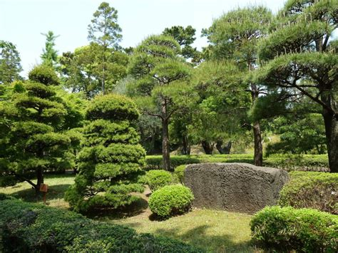 Imperial Garden East by The 10 Most Beautiful Parks In Tokyo