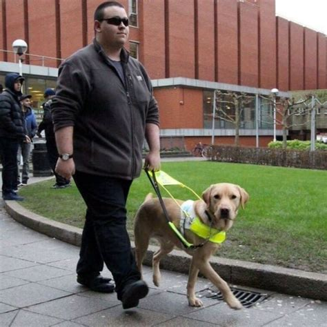 guide dogs for the blind how muslim taxi driver can mess you up internet set of news