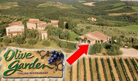 is olive garden a franchise olive garden accused lying about tuscan trained chefs italy magazine